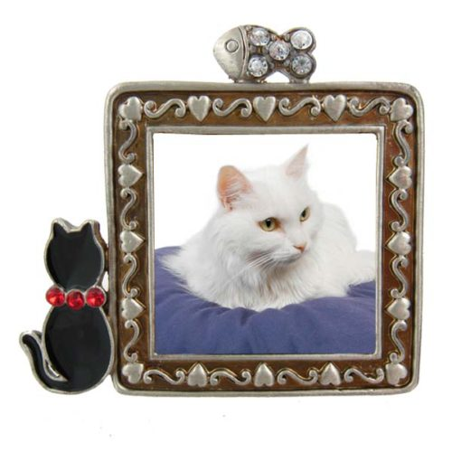 Black Cat Frame
