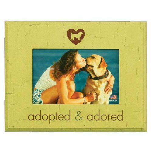 Adopted Dog Frame