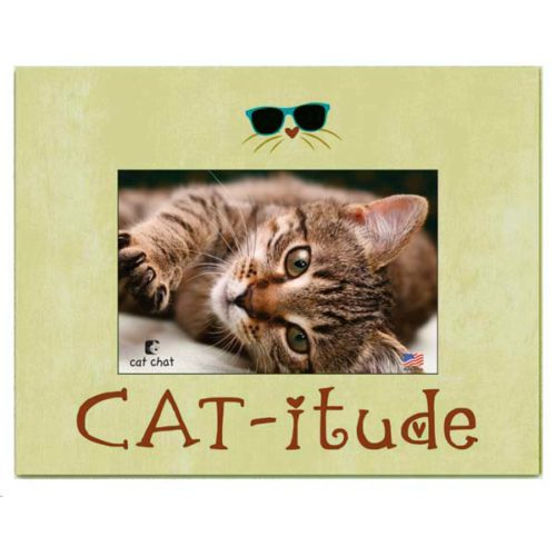 Cat-itude Frame