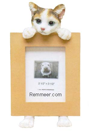Calico Cat Frame