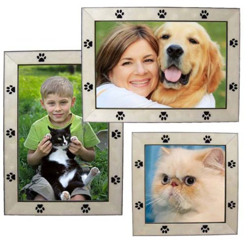 Who Rescued Who Adopted Dog Picture Frame Remmeercom
