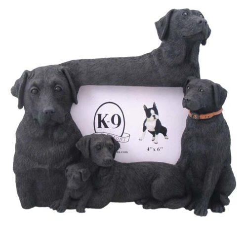 Black Lab Frame