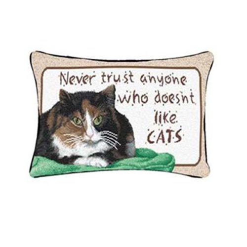 Never Trust Cat Pillow