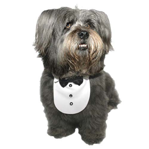 Groom Tux Collar Bib