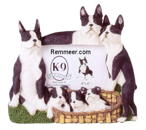 Boston Terrier Frame