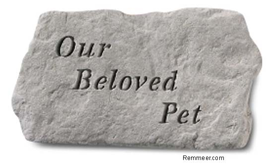 Our Beloved Pet Memorial